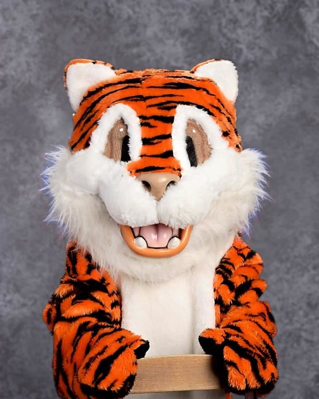 PAWS the Tiger